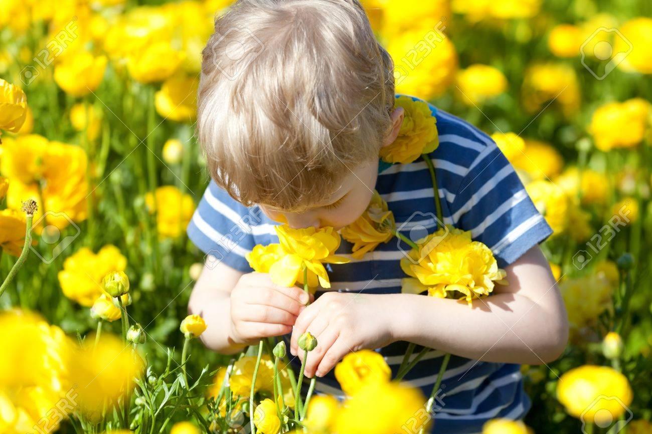 Cute Little Boy Smelling Beautiful Yellow Flowers Stock Photo