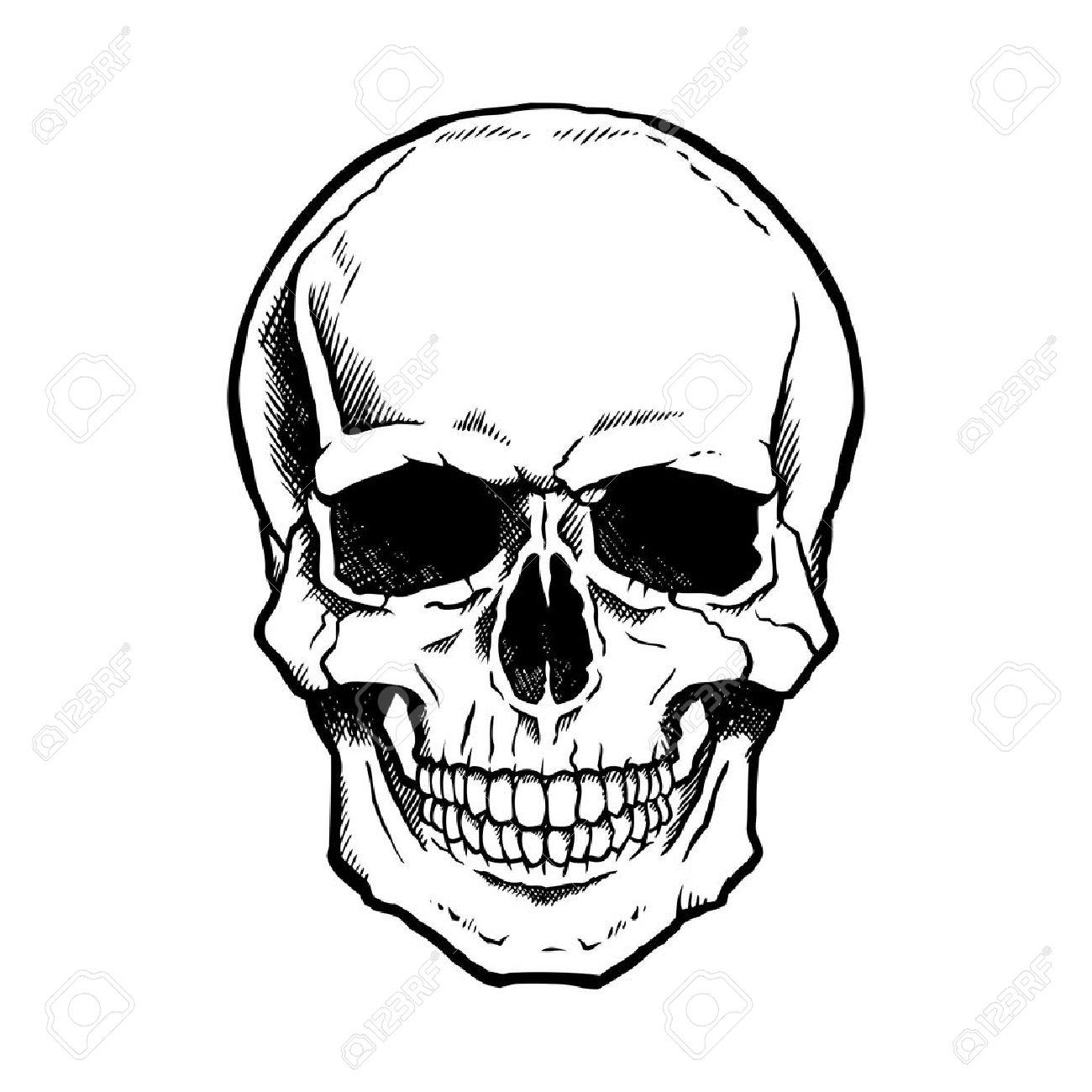 dessin tete de mort noir et blanc crne humain avec une mchoire infrieure