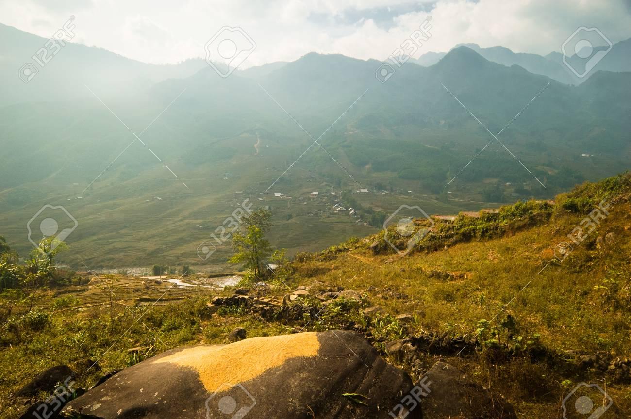 ba3c741f7 Arroz secado en una roca en la montañosa Sapa, Vietnam Foto de archivo -  8724204