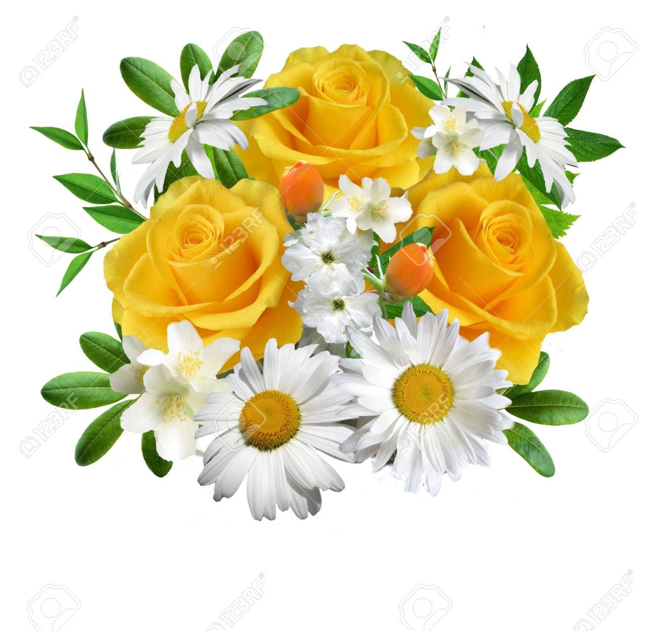 Collage  from flowers on a white background Stock Photo - 4538952