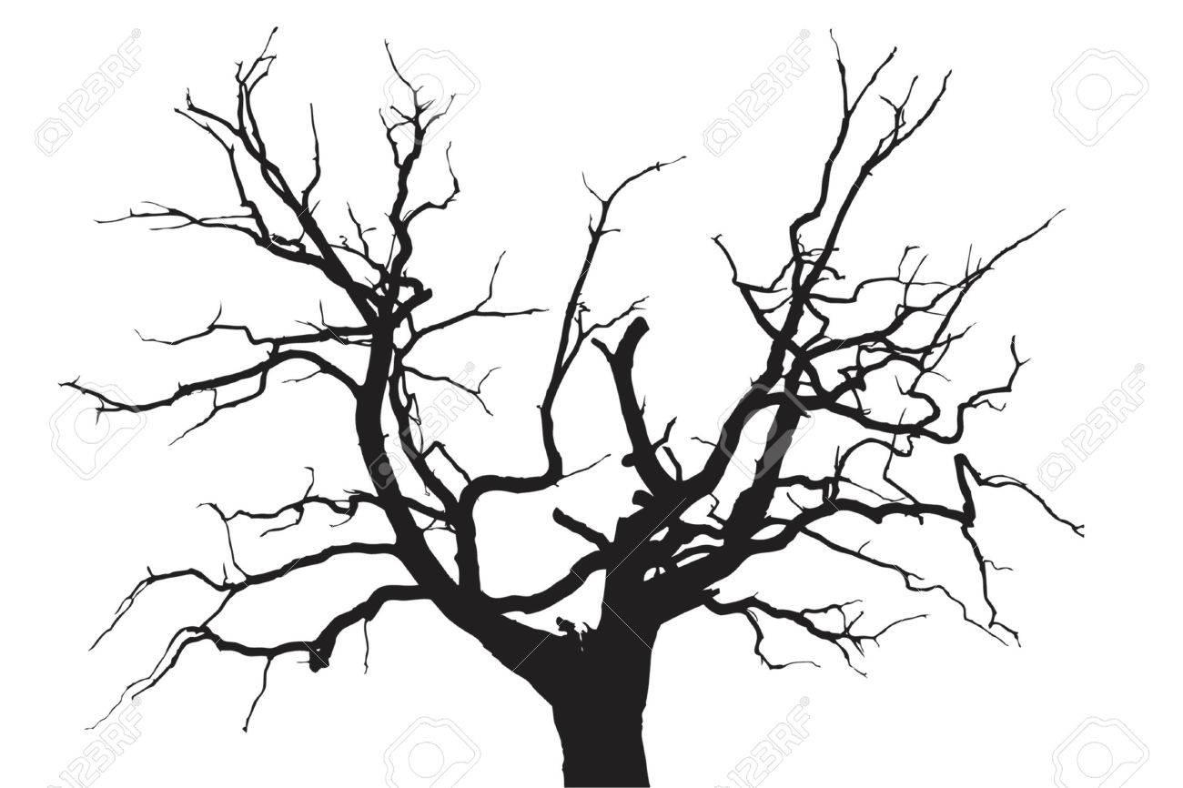 Oak Tree With Roots Sketch Gloomy dead oak tree  tree