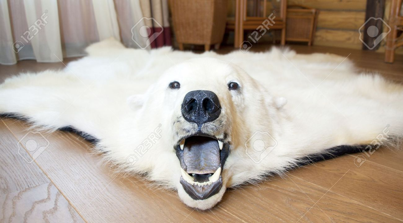 angry polar bear skin on the floor stock photo - Bearskin Rug