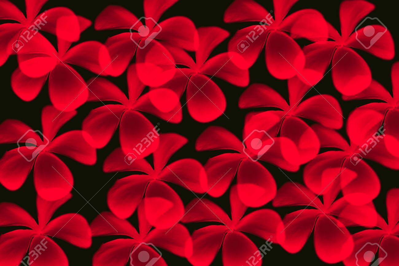 Rouge Fleur De Frangipanier Sur Fond De Couleur Noire De Modele
