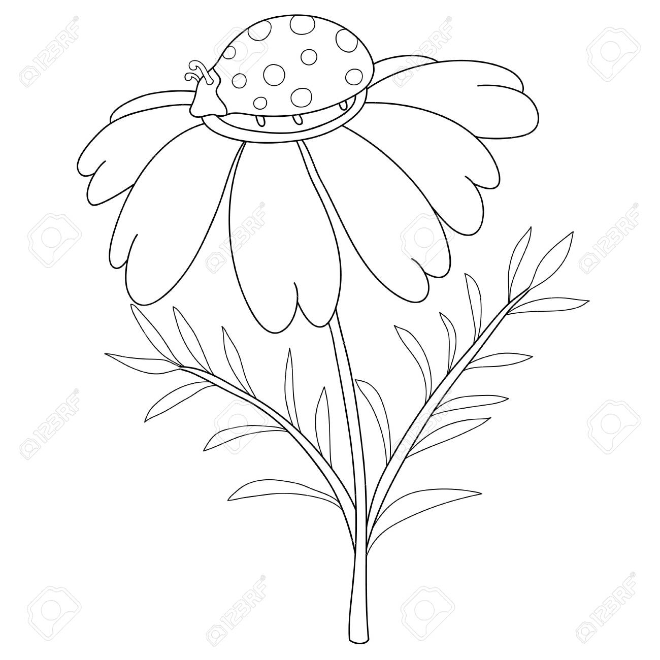 A cute ladybird on the camomile image for relaxing activity.A coloring book,page for children,black and white image. - 148720874