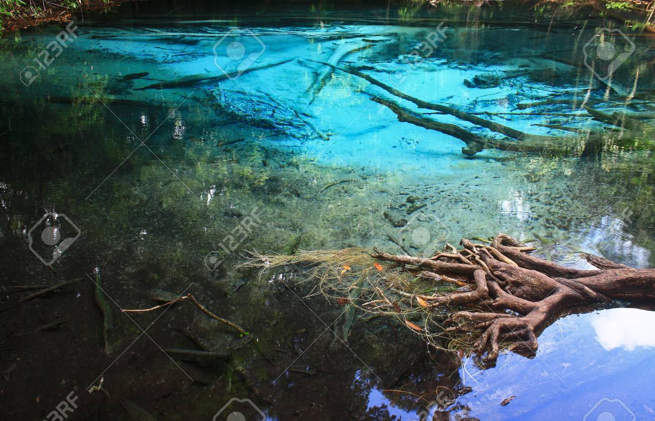Blue water in the pool and in the forest at Thailand  Blue water in the pool Stock Photo - 17591673