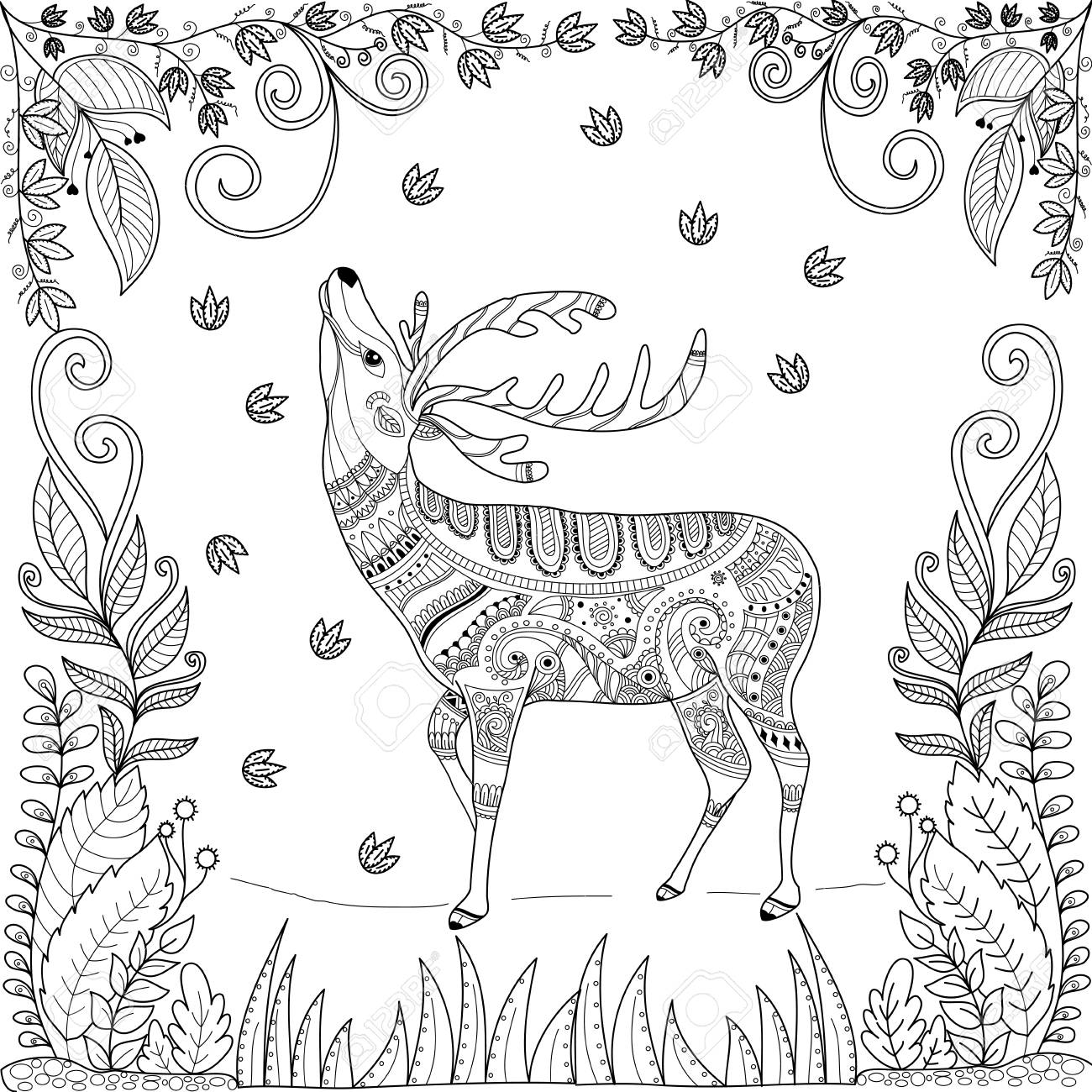 Coloring book page of deer in jungle for adult.stlyized.vector..