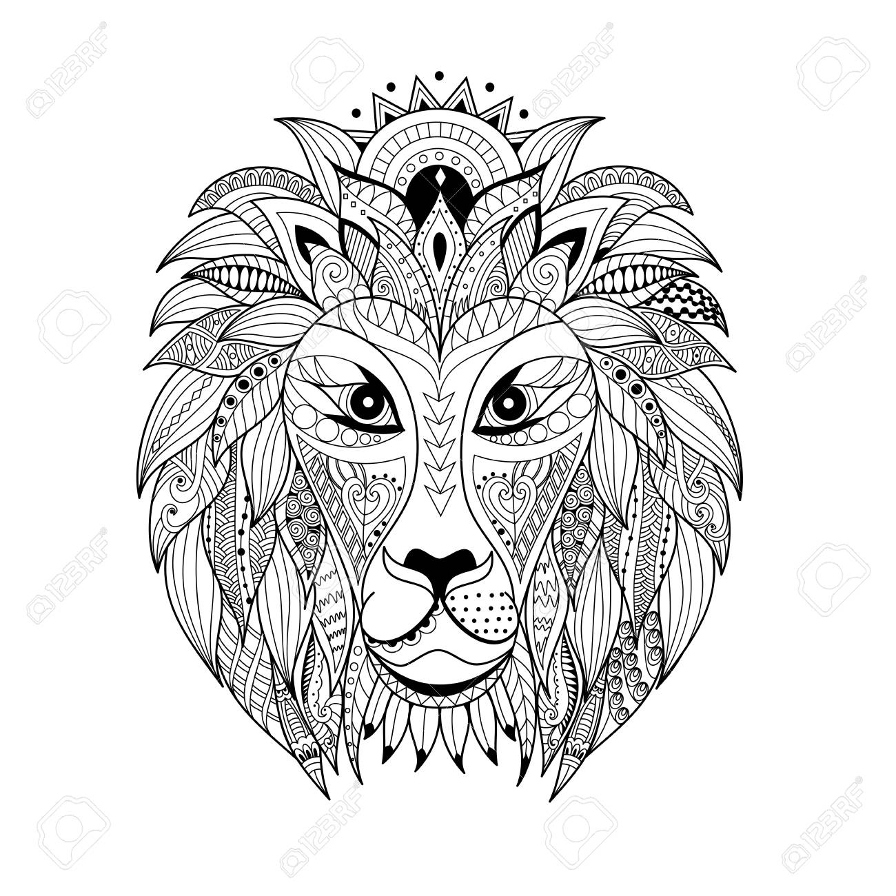 Coloring Book Lion Photo Album - Asteknikyapi