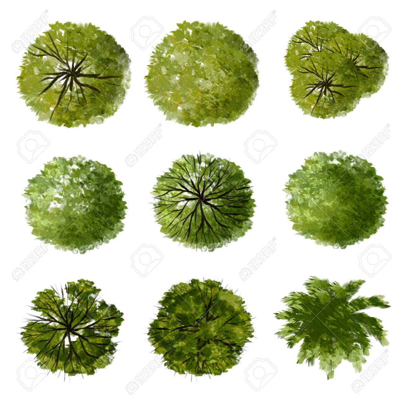 Collection of abstract watercolor green tree top view isolated on white background for landscape plan and architecture layout drawing, elements for environment and garden. - 157044997