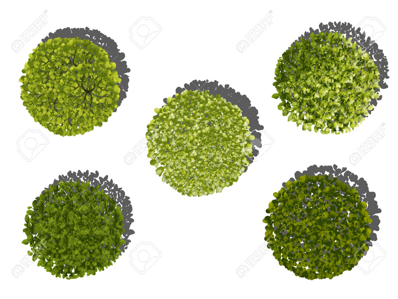 Collection of abstract watercolor green tree top view isolated on white background for landscape plan and architecture layout drawing, elements for environment and garden. - 157263290