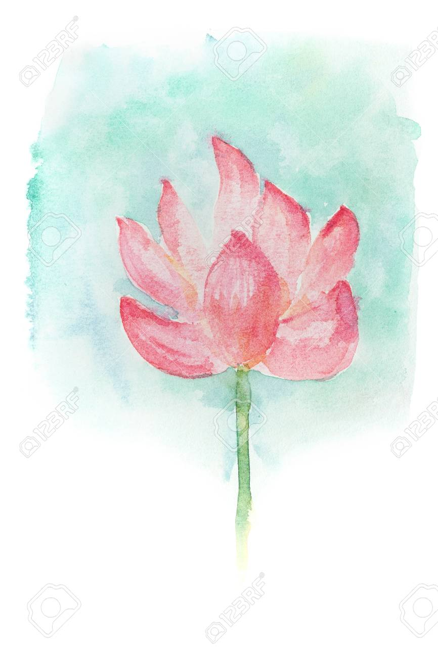 Abstract Watercolor Illustration Of Blossom Pink Lotus Flower