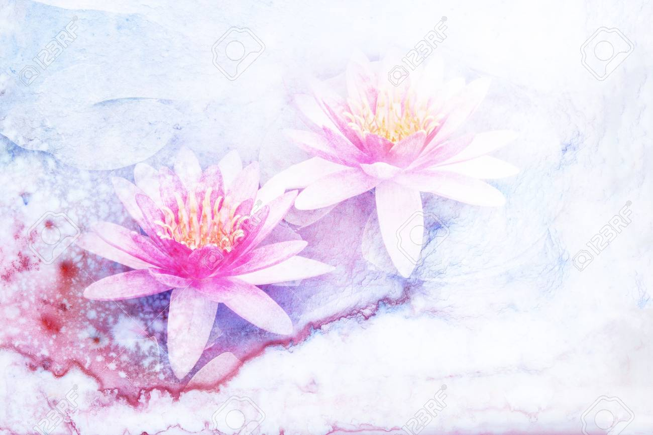 Abstract Watercolor Illustration Of Blossom Lotus Flower Watercolor
