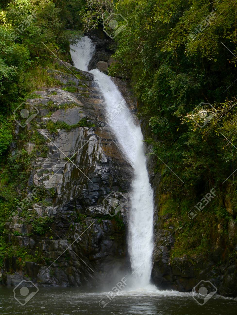 Nice small waterfall in deep forest Stock Photo - 16328021