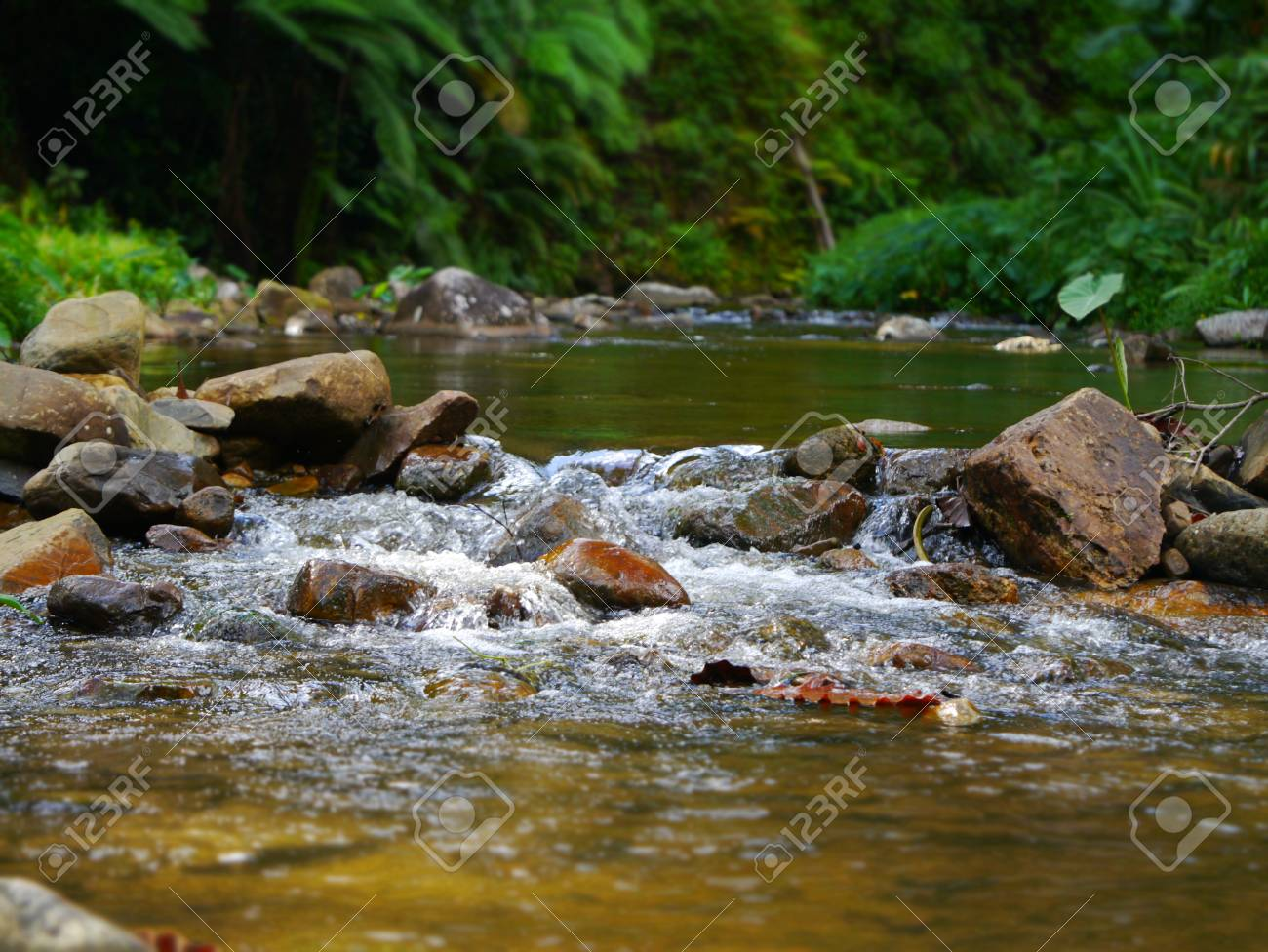 small waterfall Stock Photo - 16327919