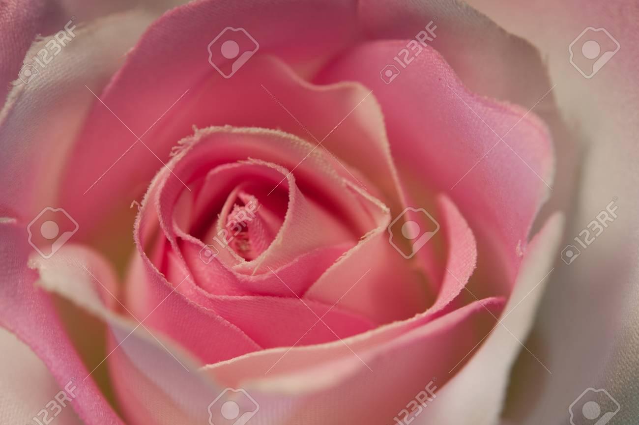 Close up of pink handmade fabric rose Stock Photo - 13757945