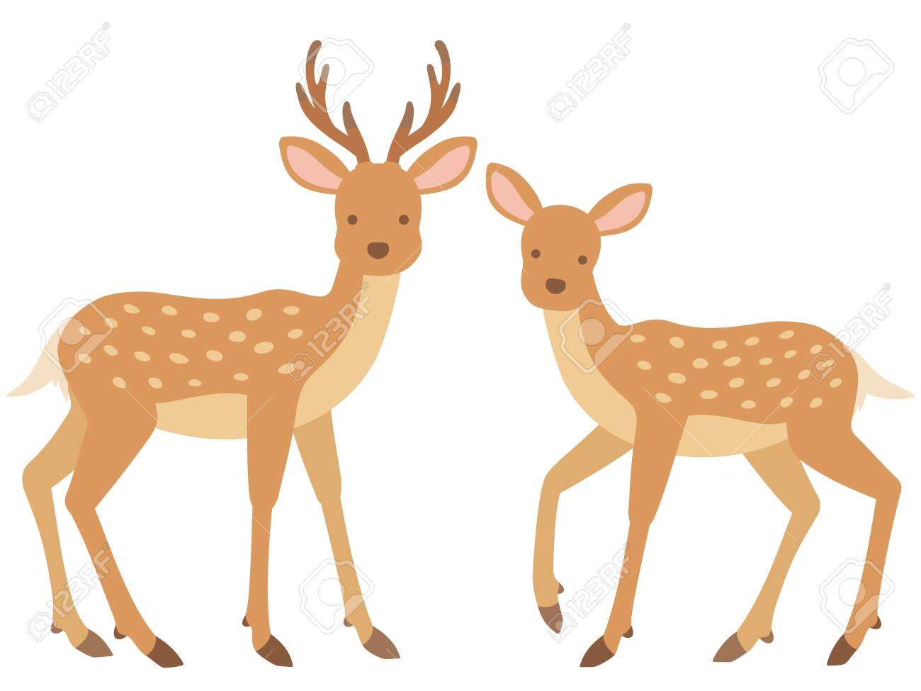 Illustration of stag and female deer - 136159595