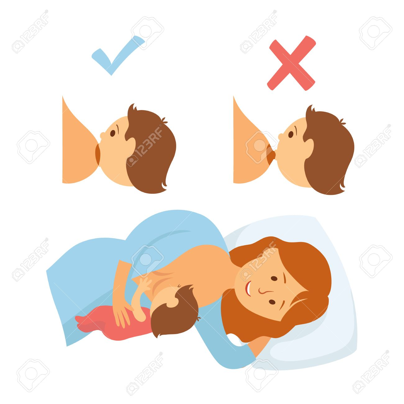 Correct Breastfeeding Position Mother Feeds Baby With Breast Royalty Free Cliparts Vectors And Stock Illustration Image 54930838