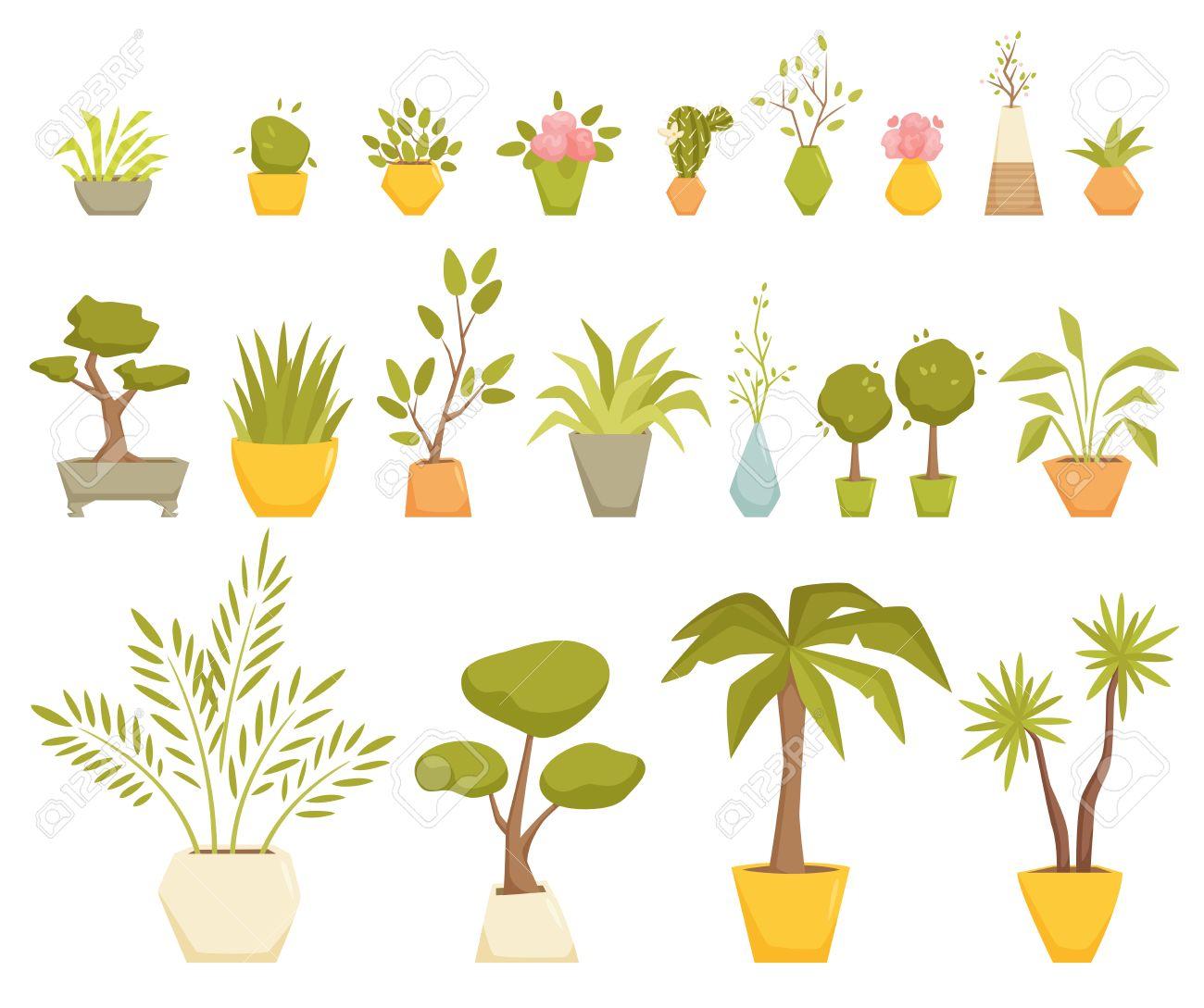 Pflanzen Im Topf Set. Inter Heim Und Büro Topfpflanzen. Zimmerpflanze  Cartoon Vektor