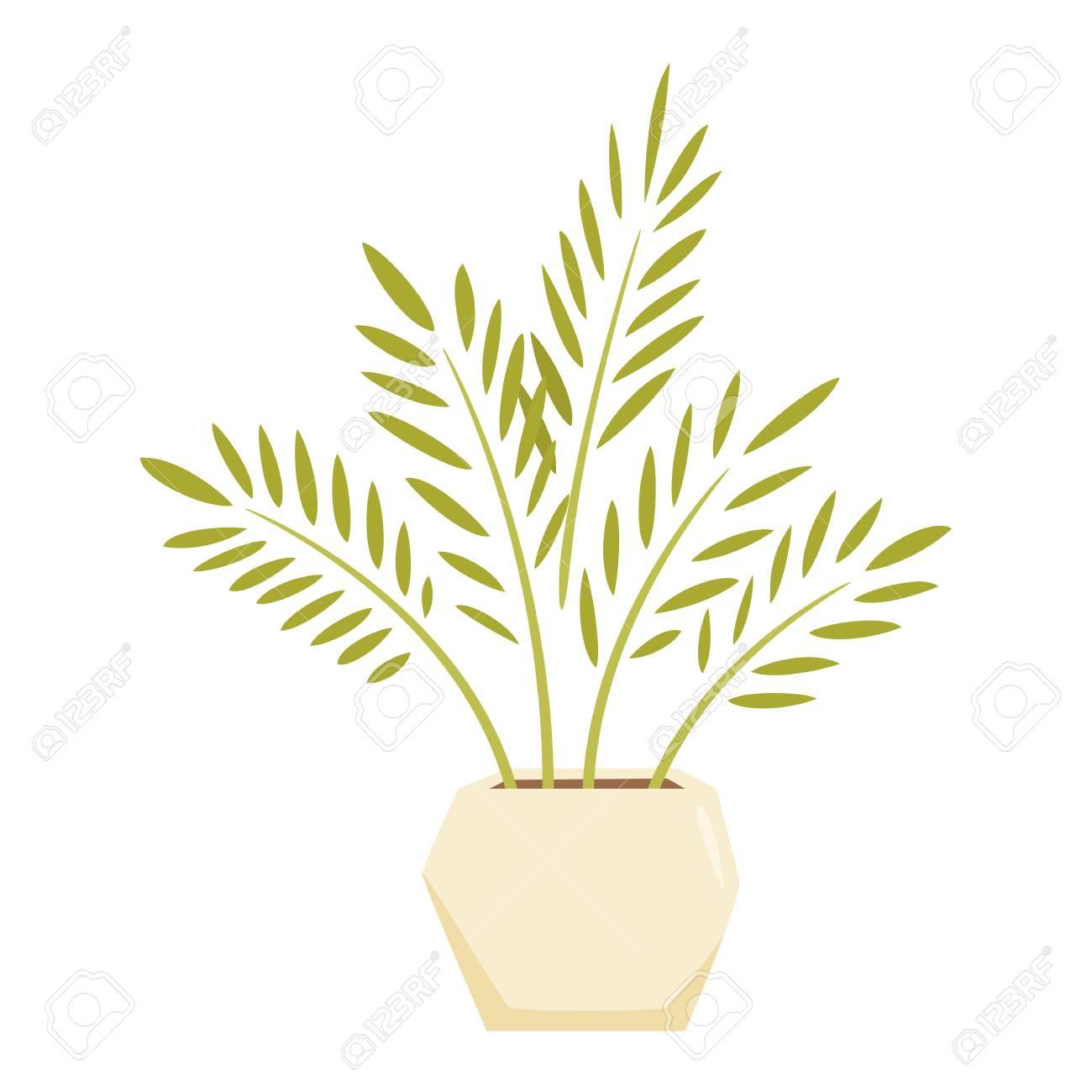 Cycas En Pot Maison D Interieur Et Bureau En Pot Enregistrement De Vecteur De Dessin Anime De Plantes D Interieur Decoration D Interieur Pot De