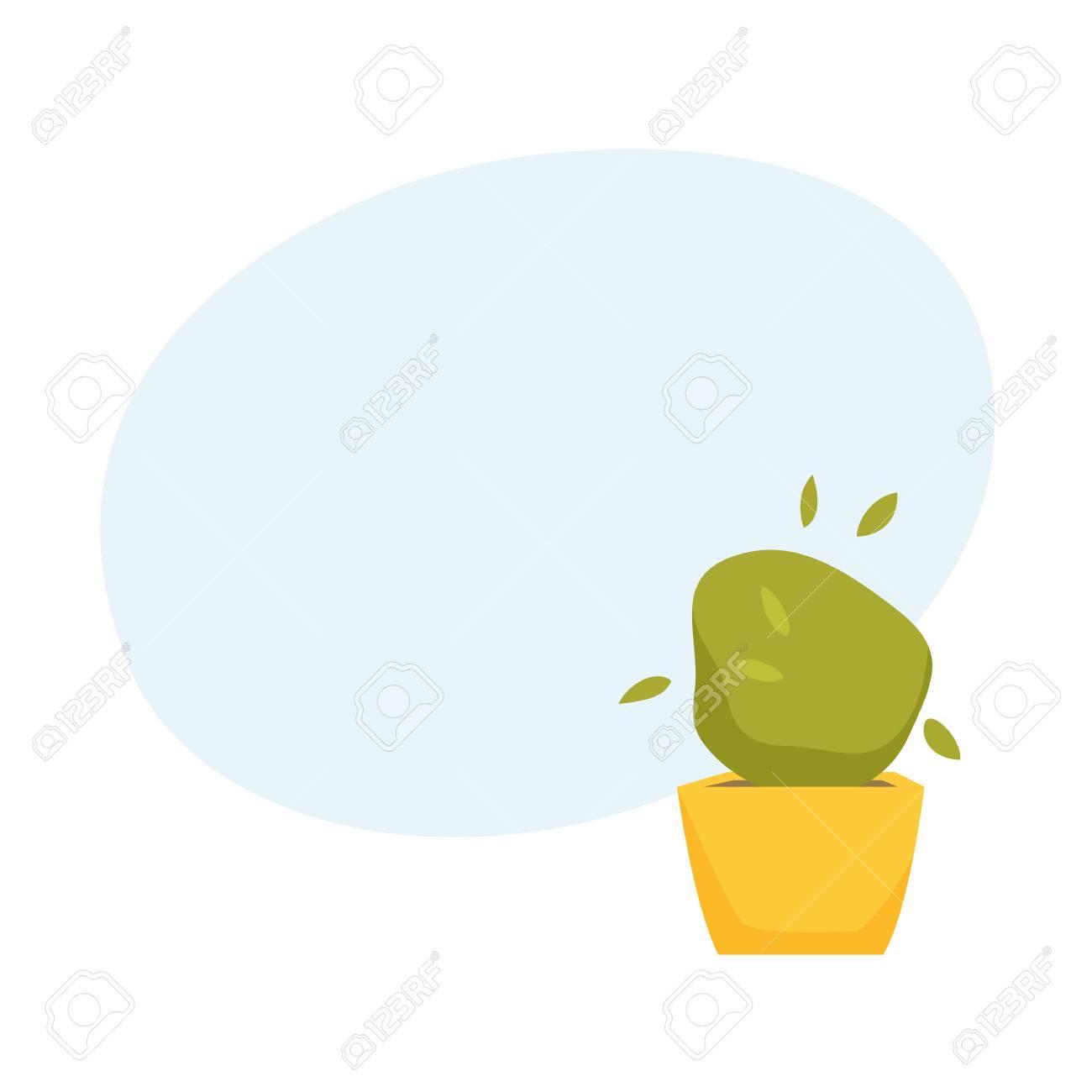 Soleyroliya En Pot Intérieur Maison Bureau Plante D Intérieur Vecteur Dessin Animé Illistration Croissance Des Fleurs Et Jardinage