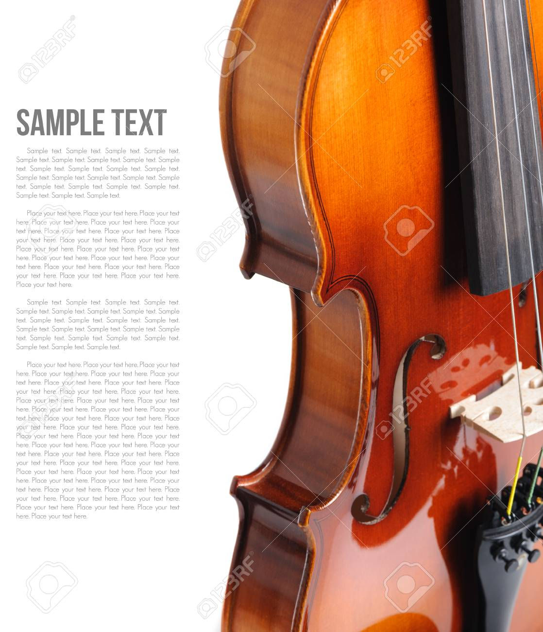 new classical violin on white background template stock photo