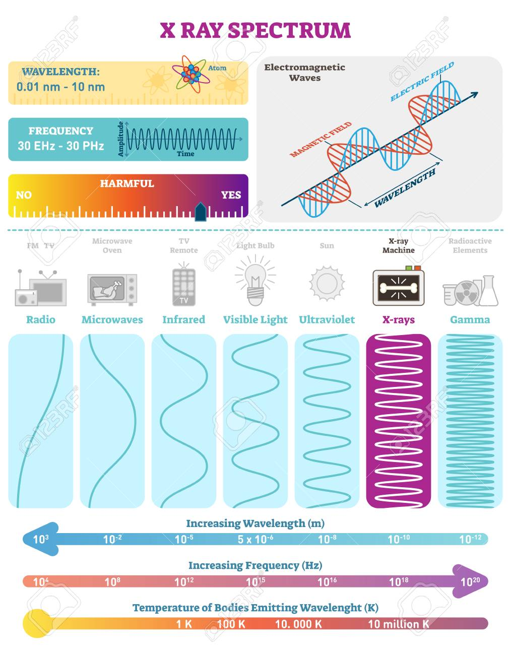 Electromagnetic Waves: X-ray Wave Spectrum. Vector Illustration ...
