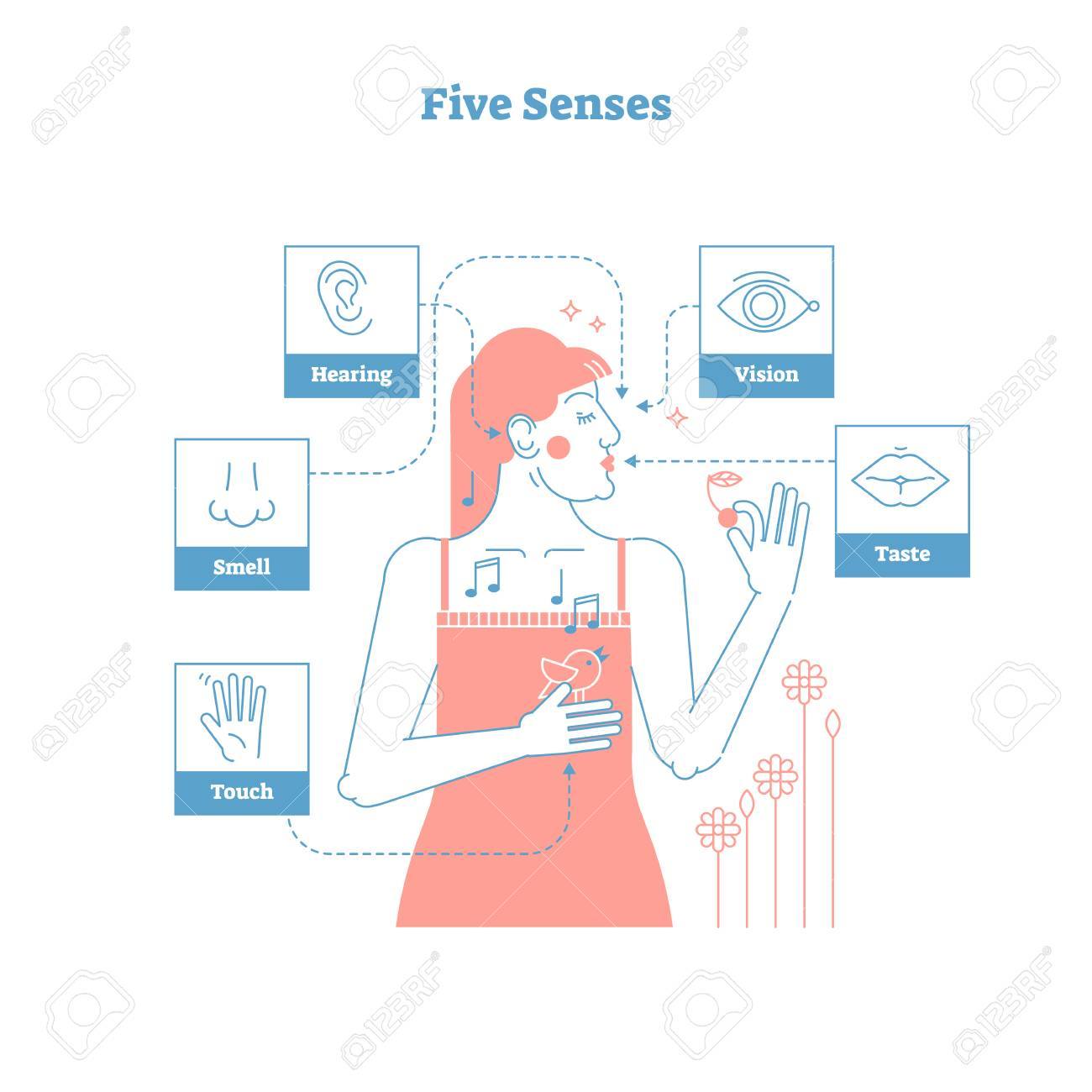 Five Human Senses Sensual Experience Artistic Outline Style Graphic