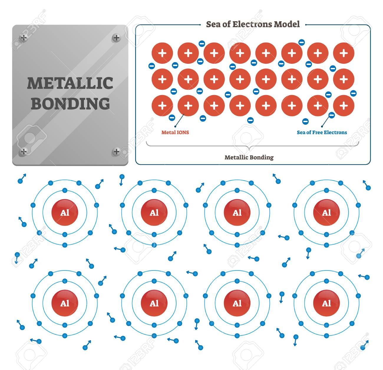 Metallic bonding vector illustration. Labeled metal and free electron sea. Process diagram that rises from electrostatic attractive force between conduction electrons and positively charged metal ions - 127729410