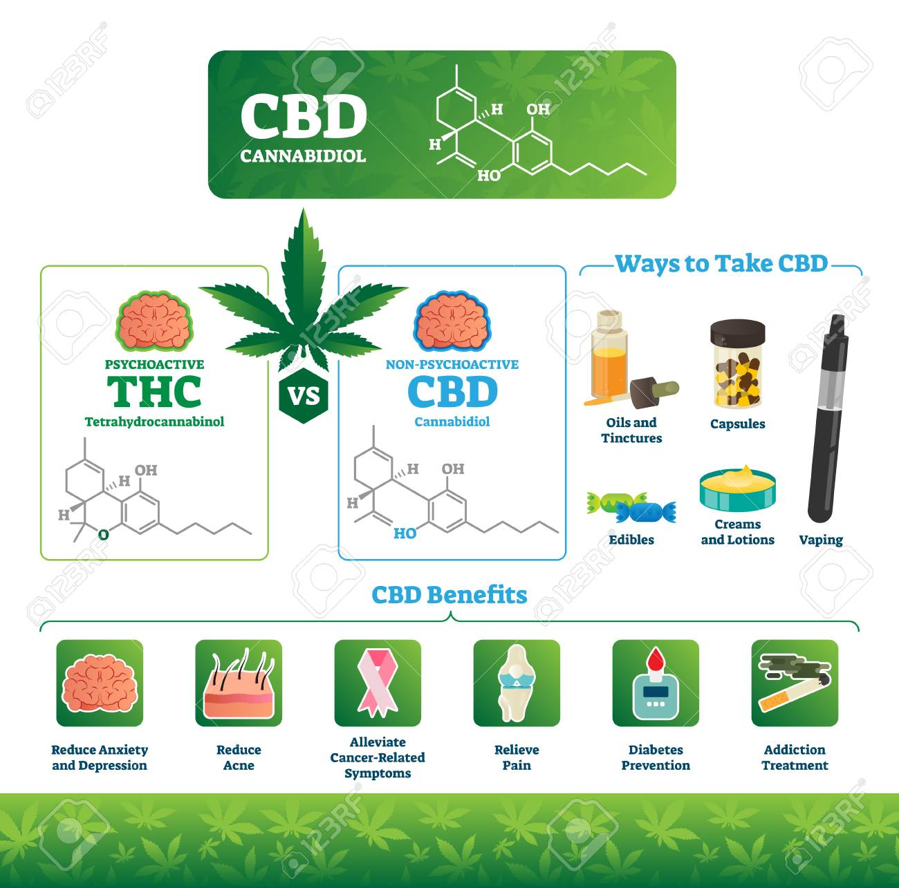 CBD vector illustration  Labeled medical THC cannabis benefits