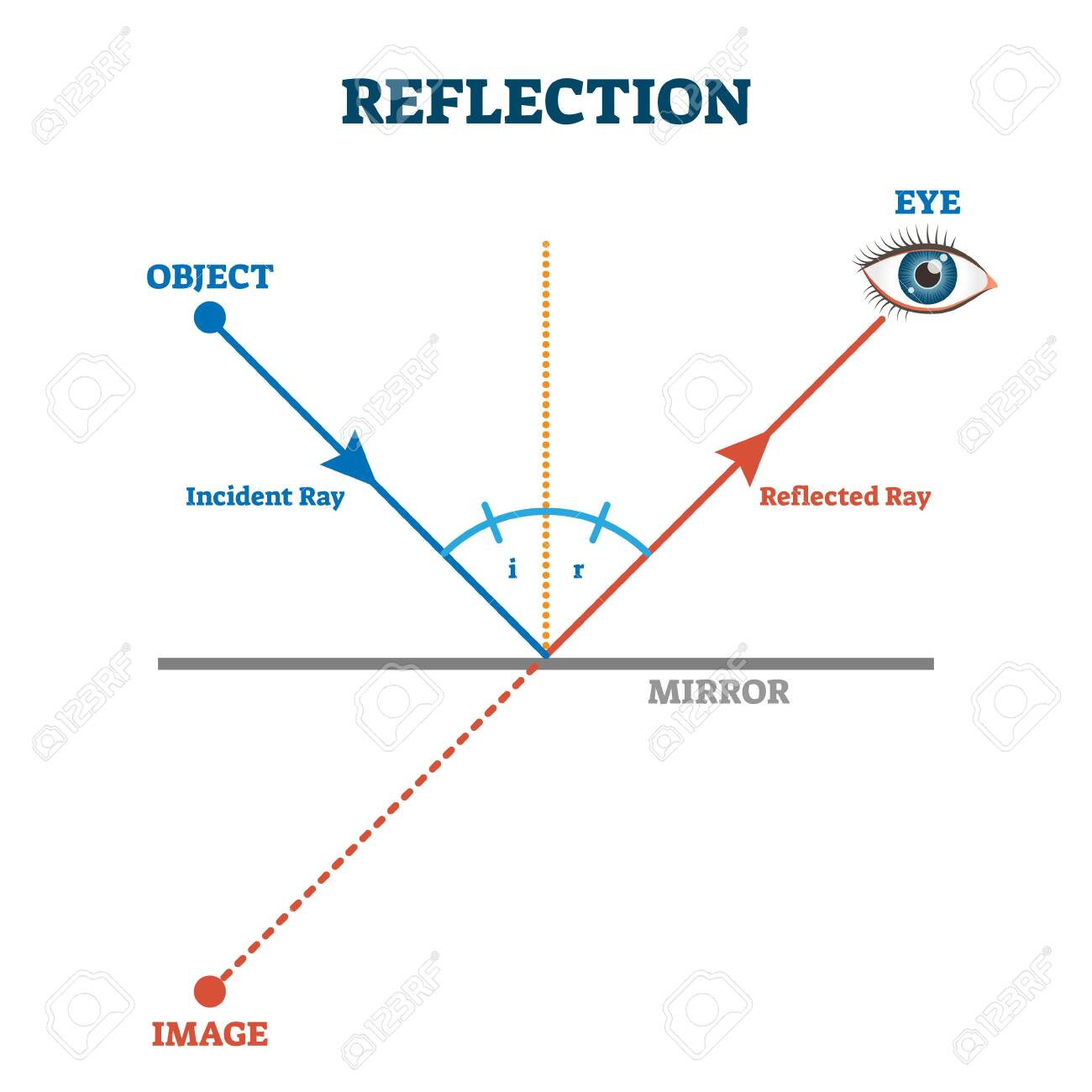 Reflection ray scheme, vector illustration diagram. Light wave physics law. Incident and reflected light ray direction example. Eye vision perception educational explanation. Simple lines and angles. - 138332597