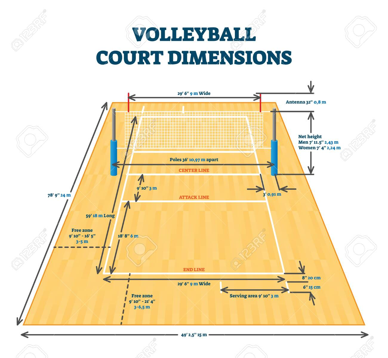 Volleyball Court Dimensions Size Guide Vector Illustration Layout Royalty Free Cliparts Vectors And Stock Illustration Image 139902374