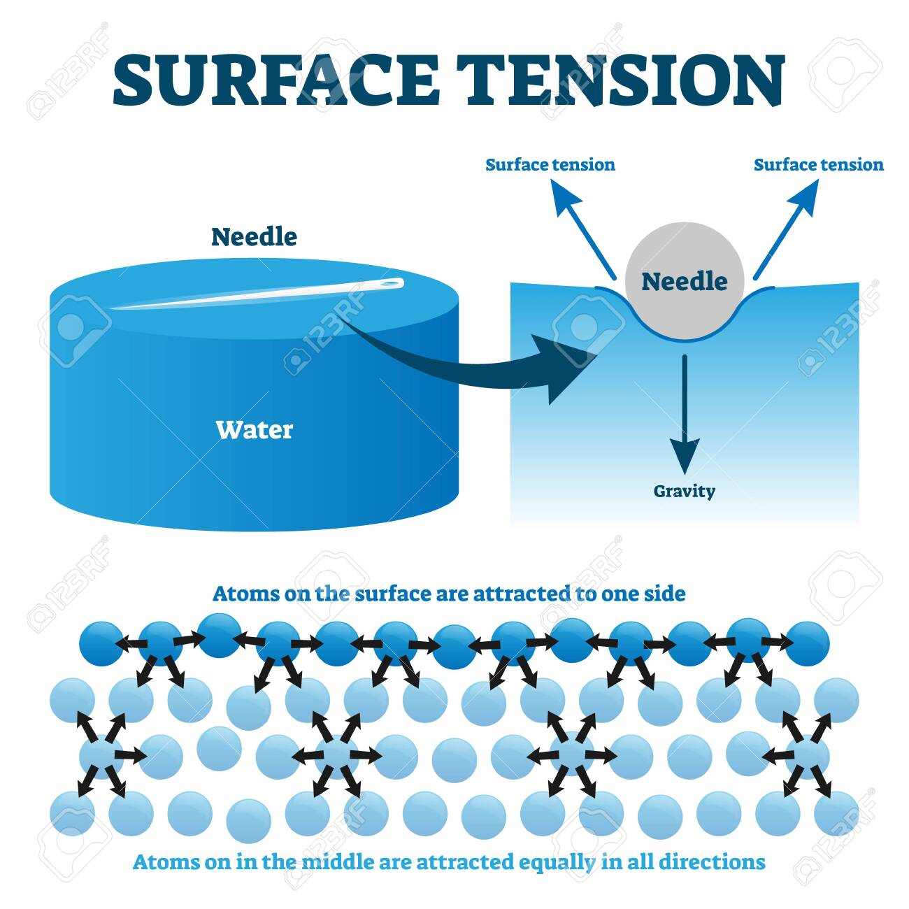tension diagramme surface tension explanation vector illustration diagram physics  vector illustration diagram physics