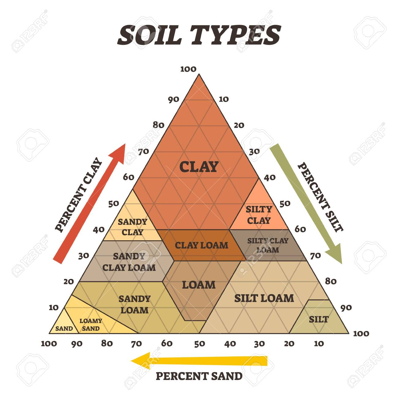 Soil types vector illustration. Labeled educational triangle pyramid scheme. Biological earth structure with agricultural clay, silt, loam and sand diagram. Various different percentage examples. - 145500137