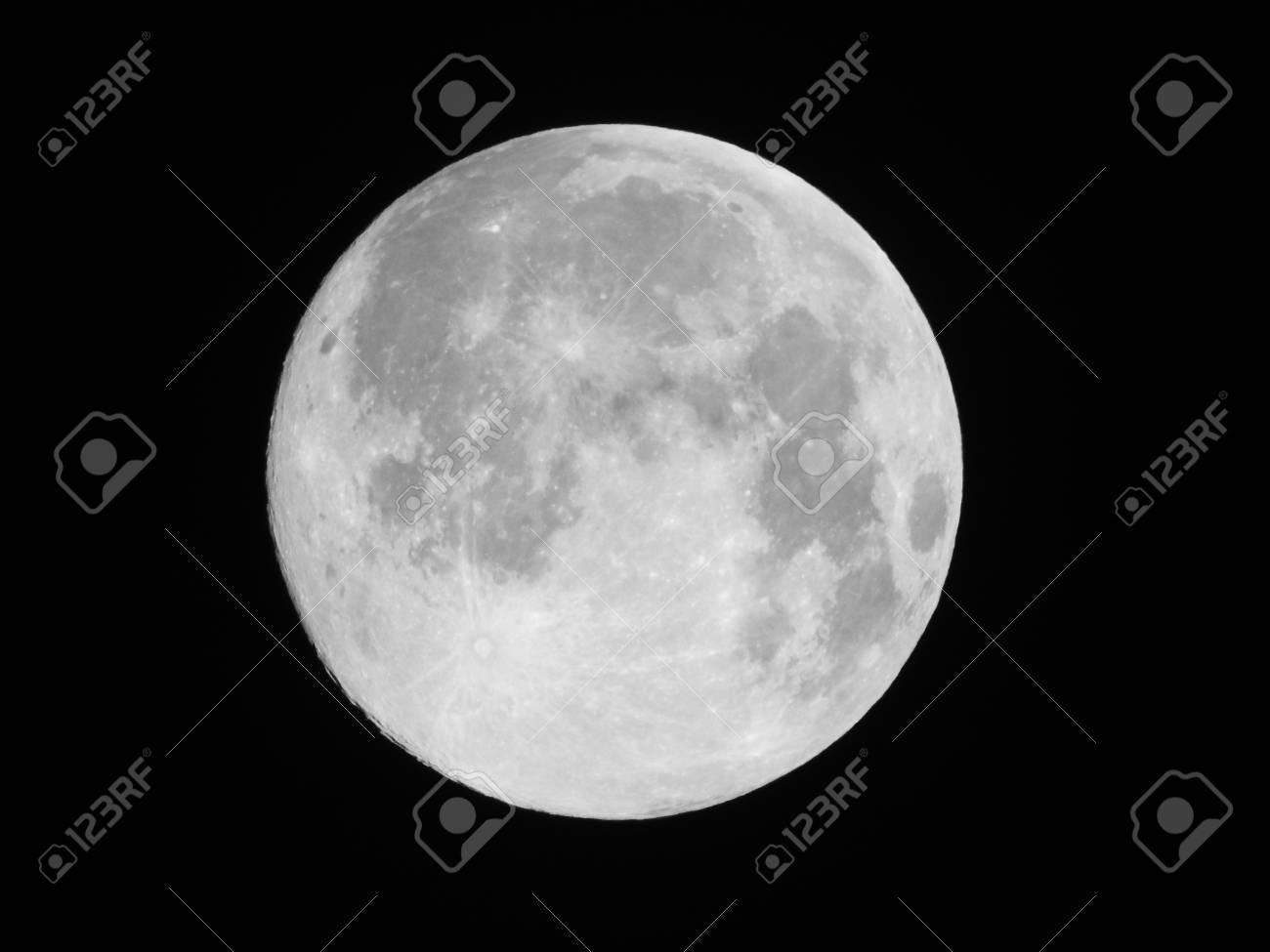 Full Moon - 43098944