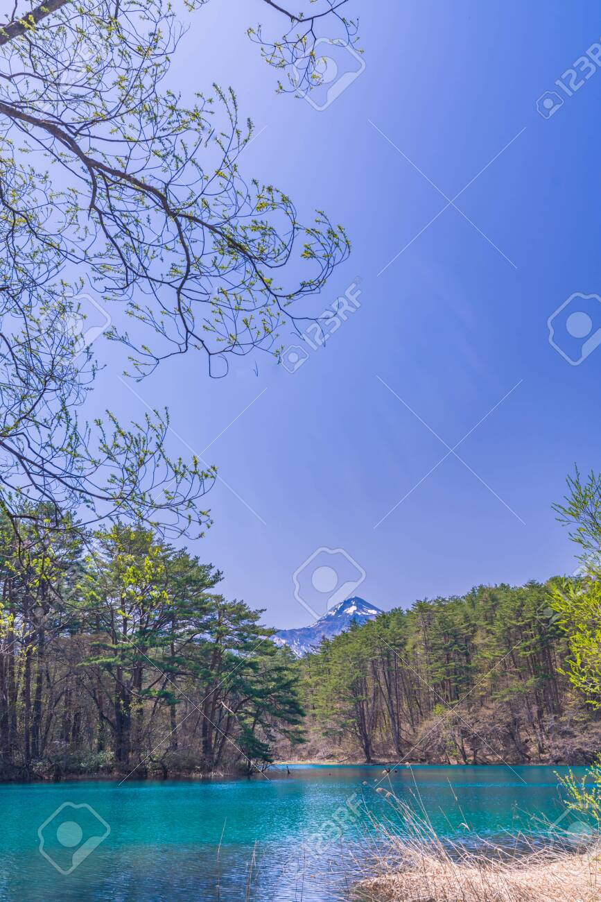 Fukushima Prefecture Urabandai, Bishamonnuma and Mt. bandai at Goshikinuma - 136597293
