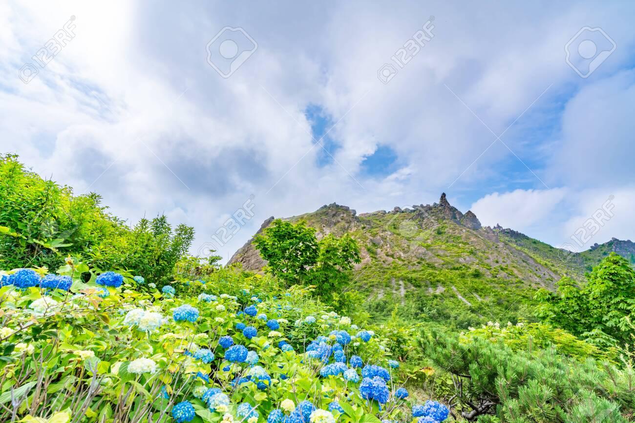Hokkaido, Shikotsu Toya National Park, The Summit of Mt. Usu - 136598047