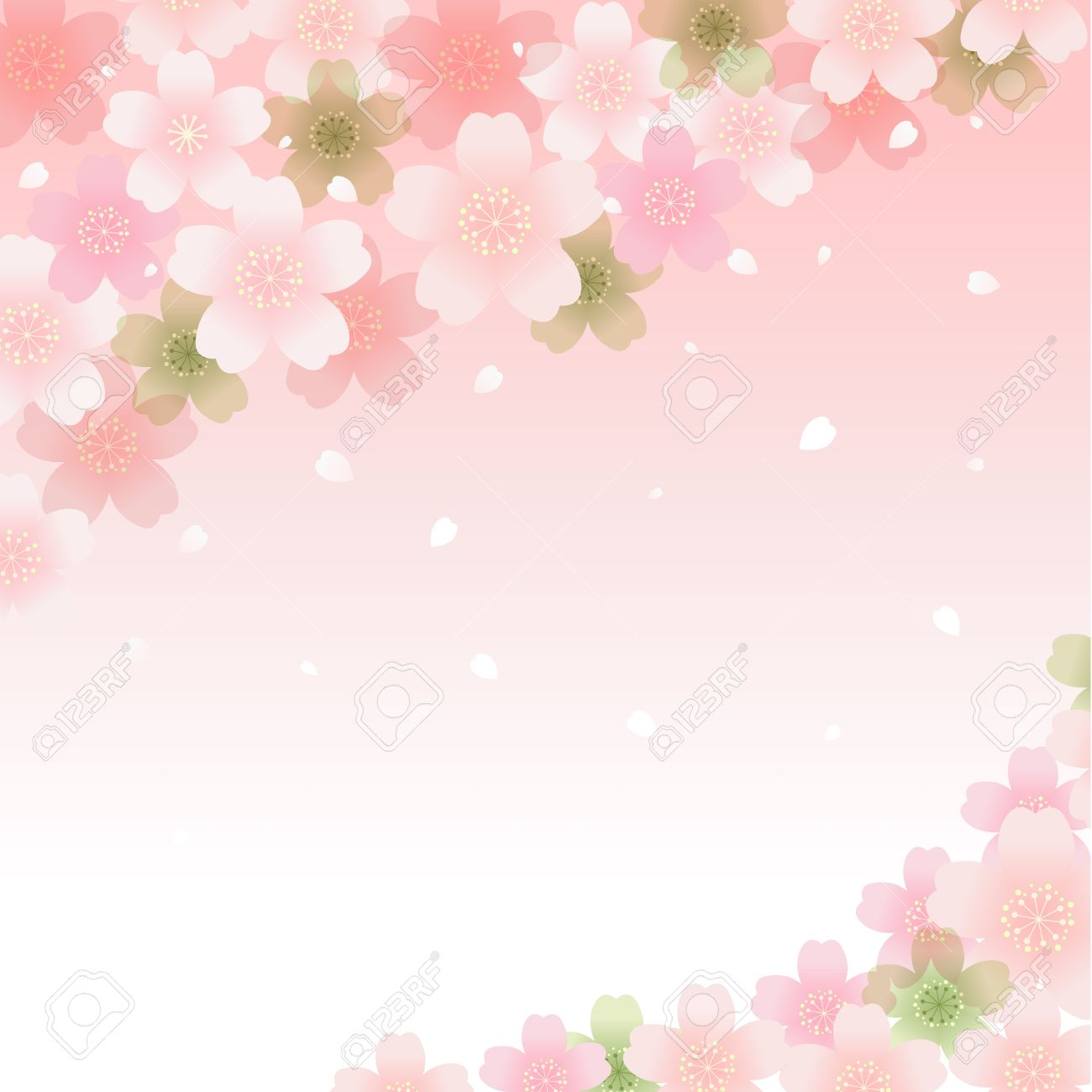 Sakura Cherry Blossom Background Transparency, Gradients, Clipping ...