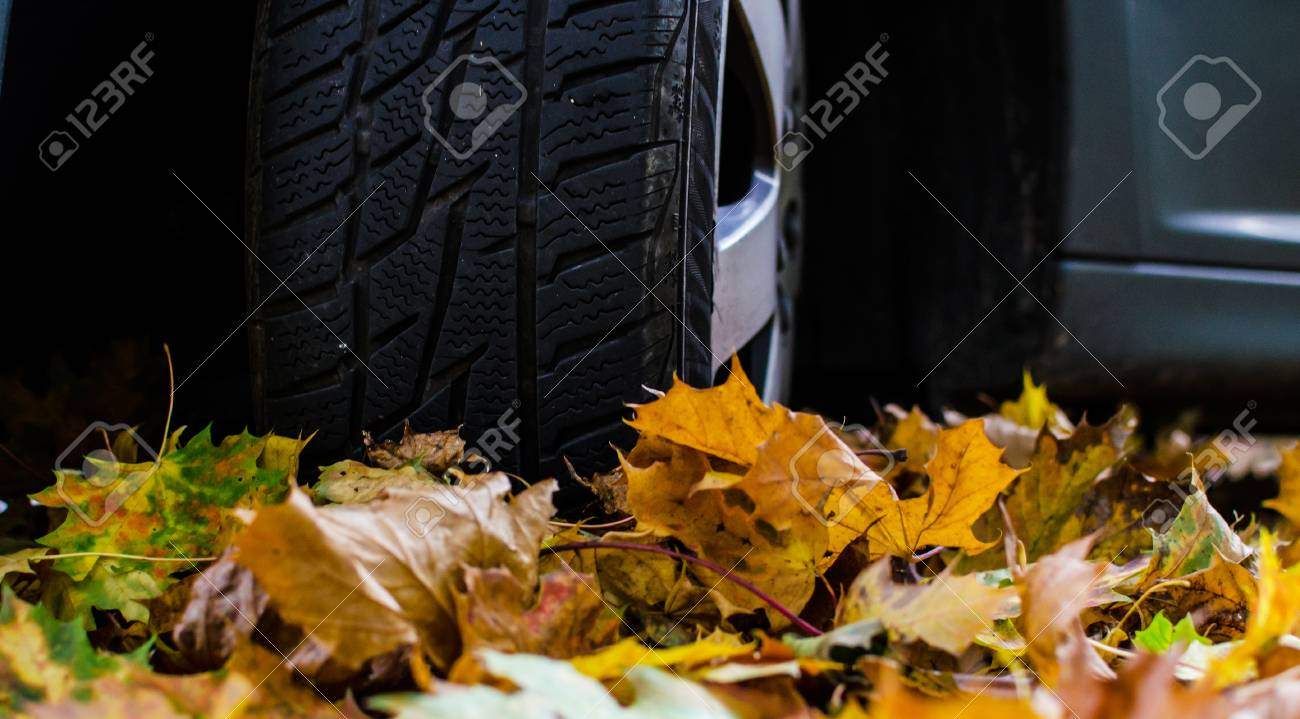 Auto Und Reifen Im Herbst Färben Blätter. Lizenzfreie Fotos, Bilder ...