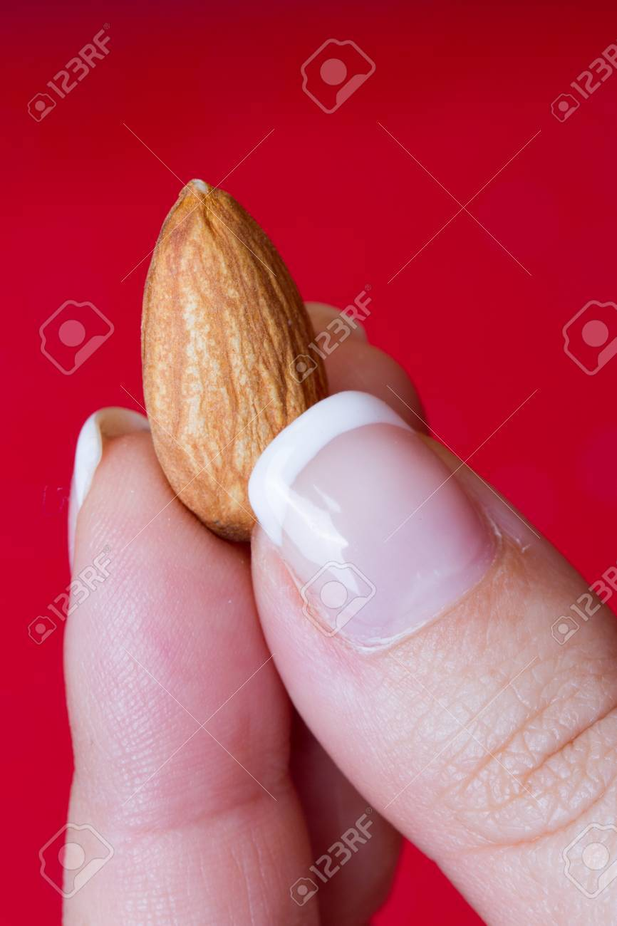 https://previews.123rf.com/images/nosvos/nosvos1510/nosvos151000004/46209991-one-almond-in-a-girl-hand.jpg
