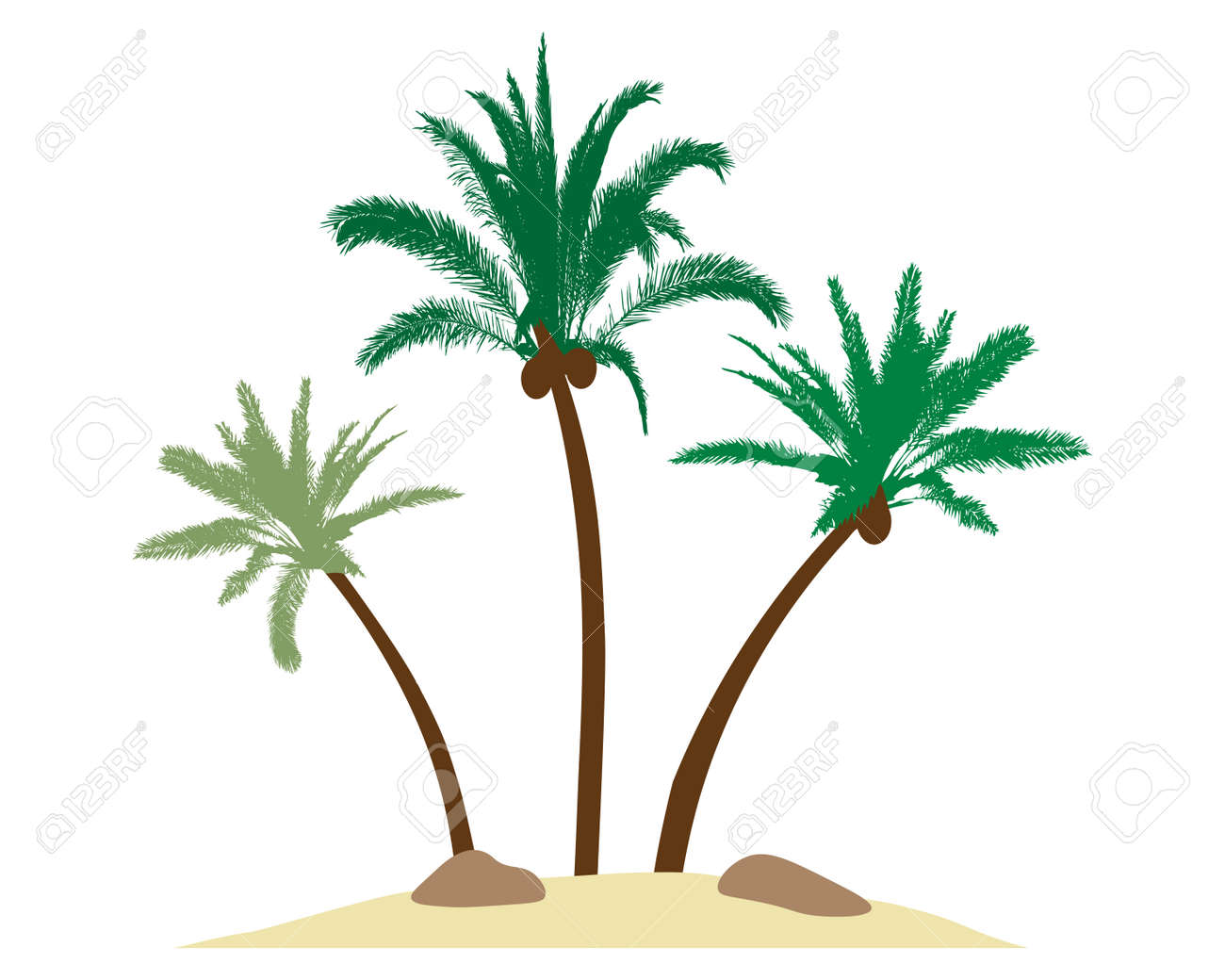 Beautiful palm trees with coconuts on island, sand, stones. Vector illustration - 164195252