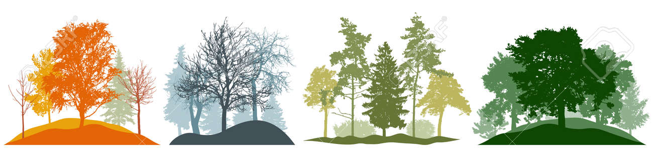 Four season, autumn and winter and spring and summer, set. Silhouette of beautiful nature, landscape. Many different trees. Vector illustration. - 164644859