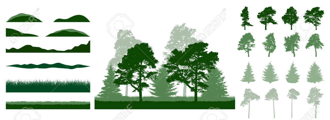 Constructor summer woodland, landscape. Silhouettes of beautiful spruce trees, pine, other trees, grass, hill. Creation of beautiful park, forest, etc. Collection of design element. Vector illustration - 164644862