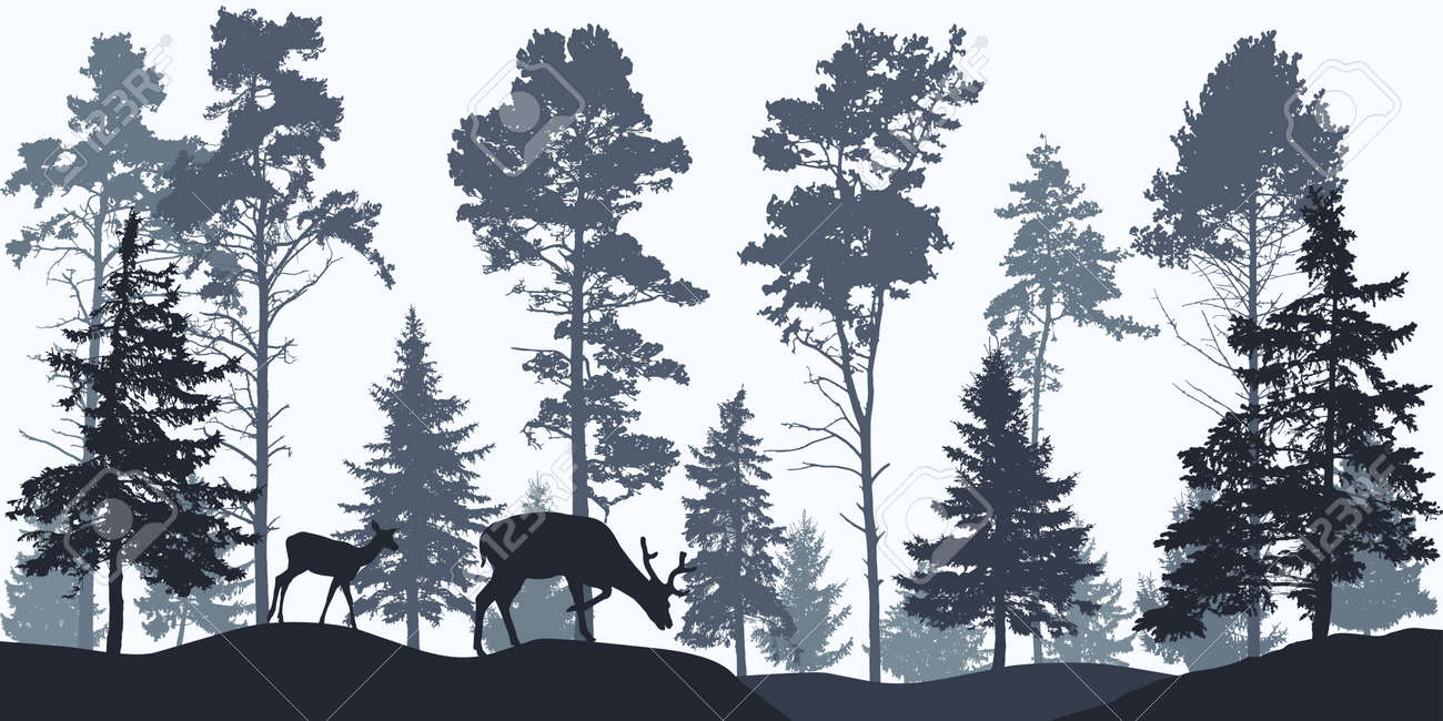 Wallpaper woodland, silhouette of coniferous forest and animals. - 168834791