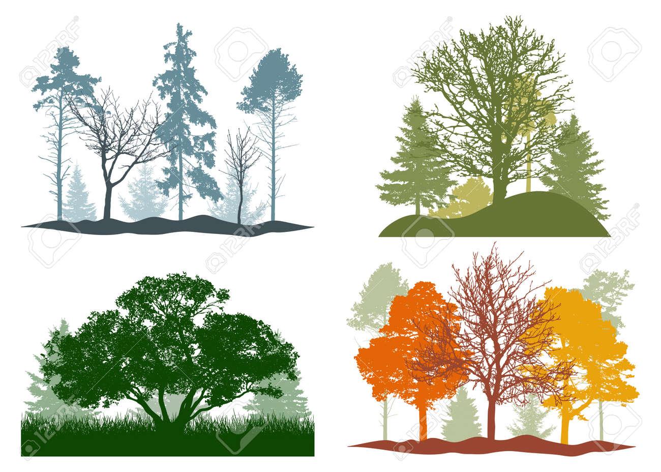 Four seasons, silhouette of summer, autumn, winter, spring woodland, landscape. Vector illustration - 170586875