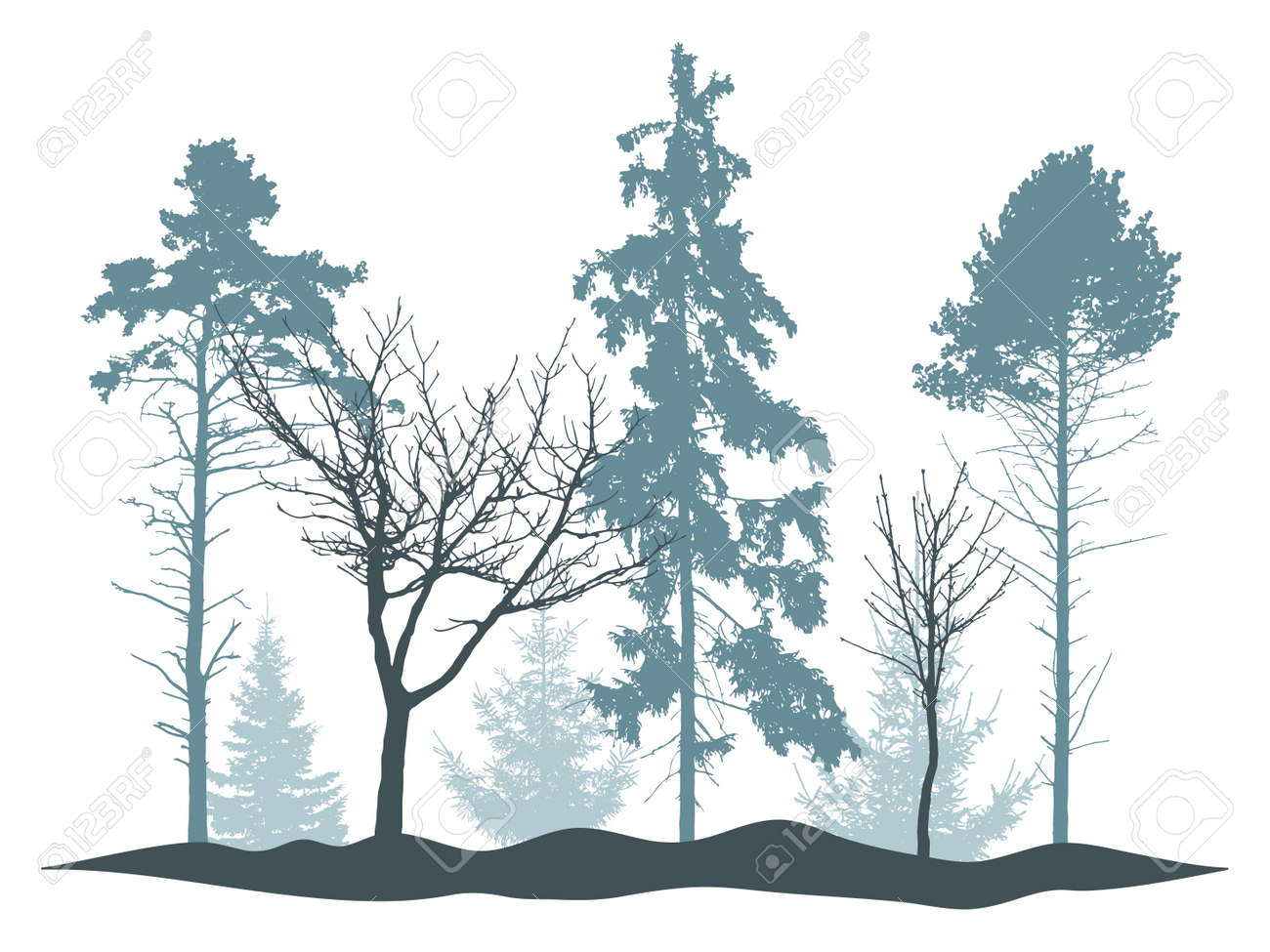 Winter woodland, silhouette of tree, spruce, pine. Beautiful nature, landscape. Vector illustration - 170586878