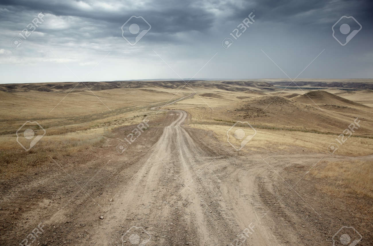 Country roads in the desert steppe - 8812233
