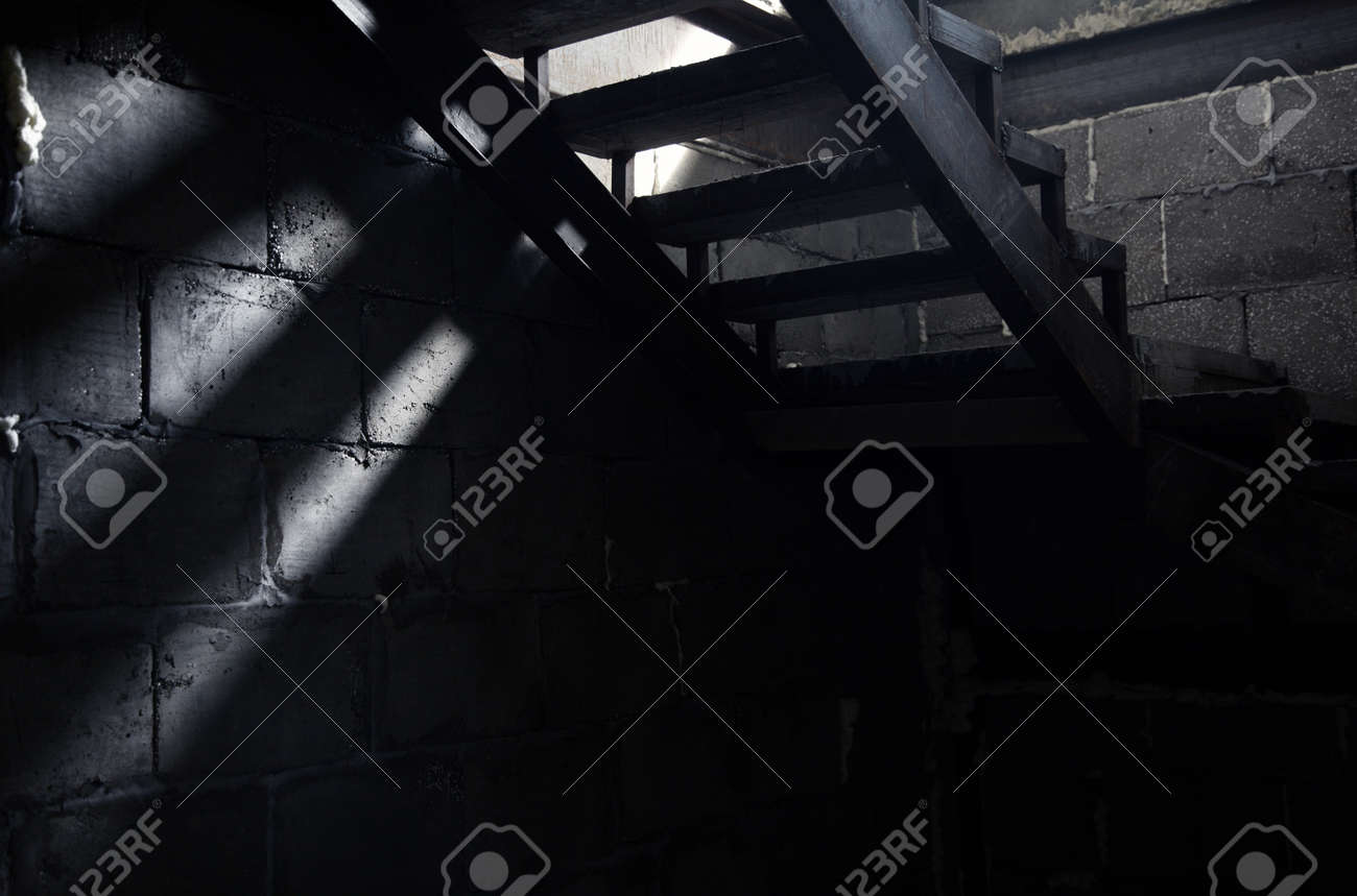 Basement Stairs: Old Staircase In The Dark Basement. Natural Light And  Shadows Stock Photo
