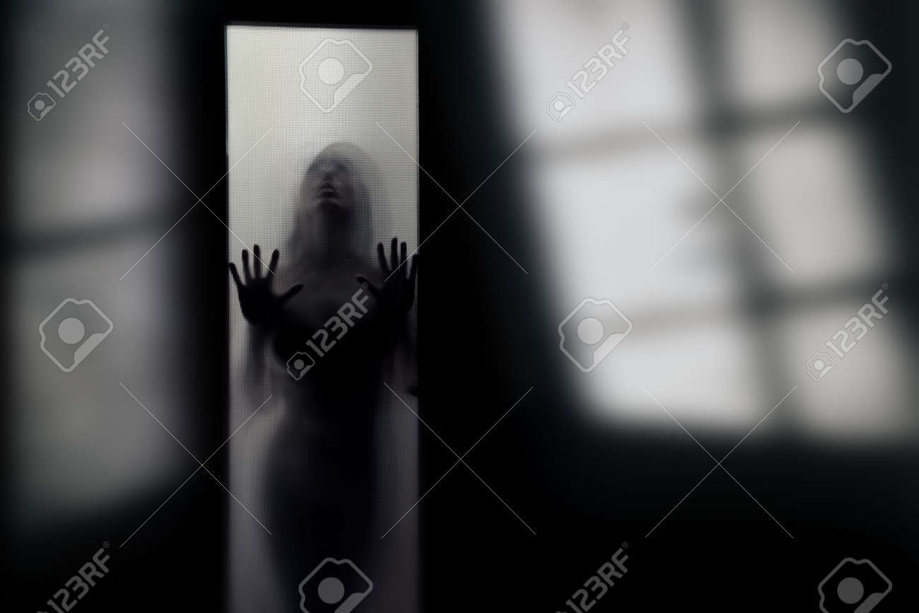 Silhouette of the female alien behind the glass door in the dark interior with shadows Stock Photo - 9349642