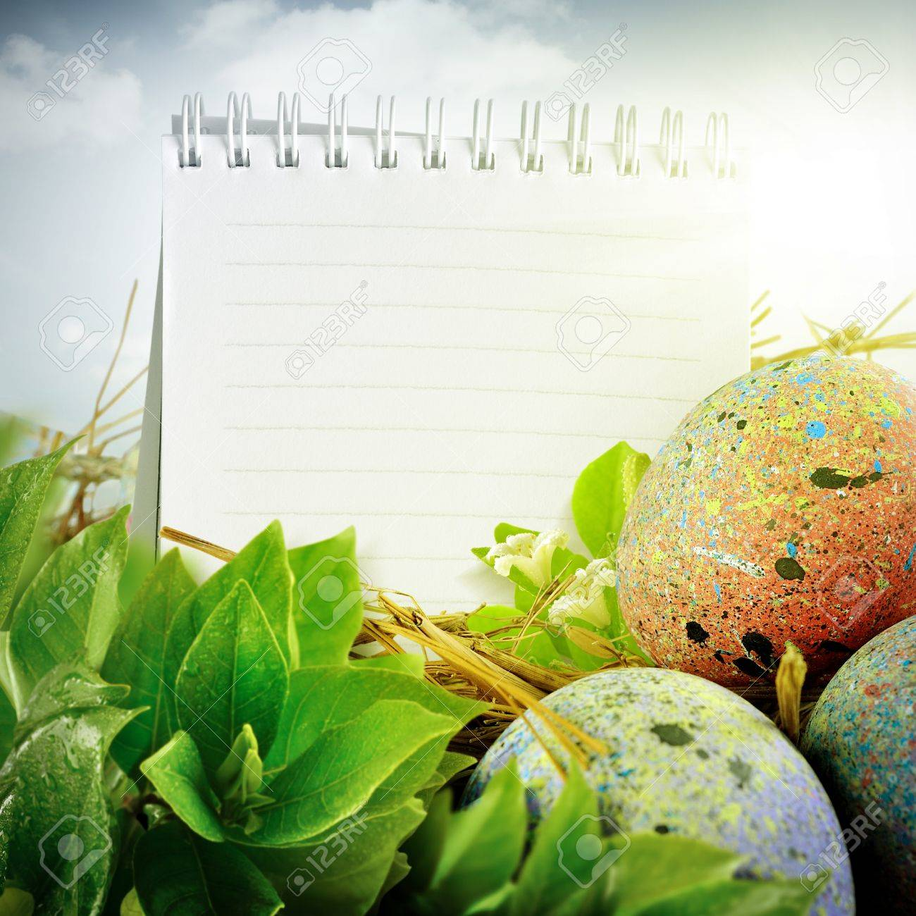 Easter eggs design. With painted eggs, green leaf, notepad, & flower Stock Photo - 13269239