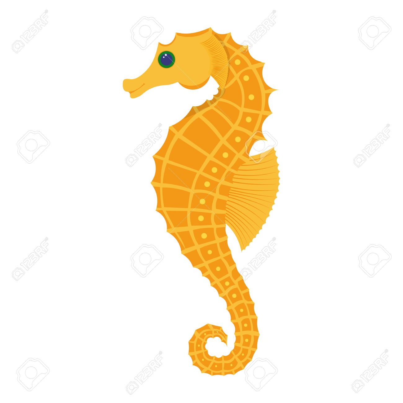 seahorse vector illustration isolated on white background royalty rh 123rf com seahorse vector png seahorse vector image