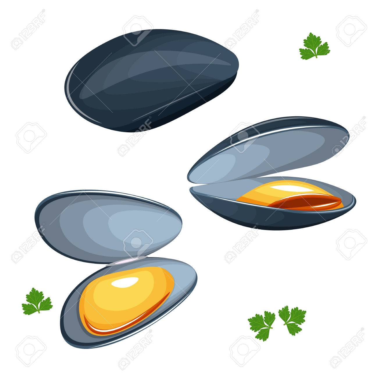 mussels vector illustration isolated on a white background royalty rh 123rf com Cartoon Ocean Clip Art Borders Free Free Nautical Clip Art
